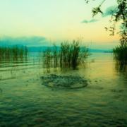 A só, egy pohár víz és a tó
